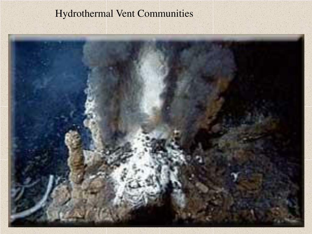 Hydrothermal Vent Communities
