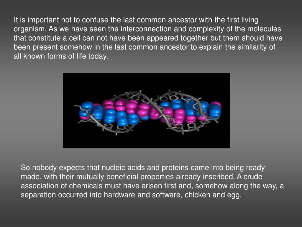 It is important not to confuse the last common ancestor with the first living organism. As we have seen the interconnection and complexity of the molecules that constitute a cell can not have been appeared together but them should have been present somehow in the last common ancestor to explain the similarity of all known forms of life today.