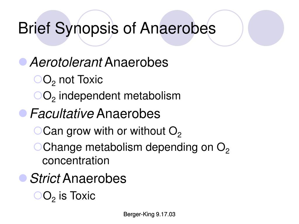 Brief Synopsis of Anaerobes