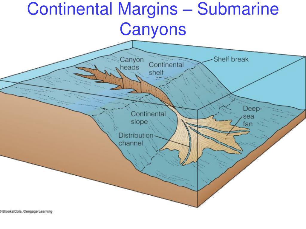 Continental Margins – Submarine Canyons