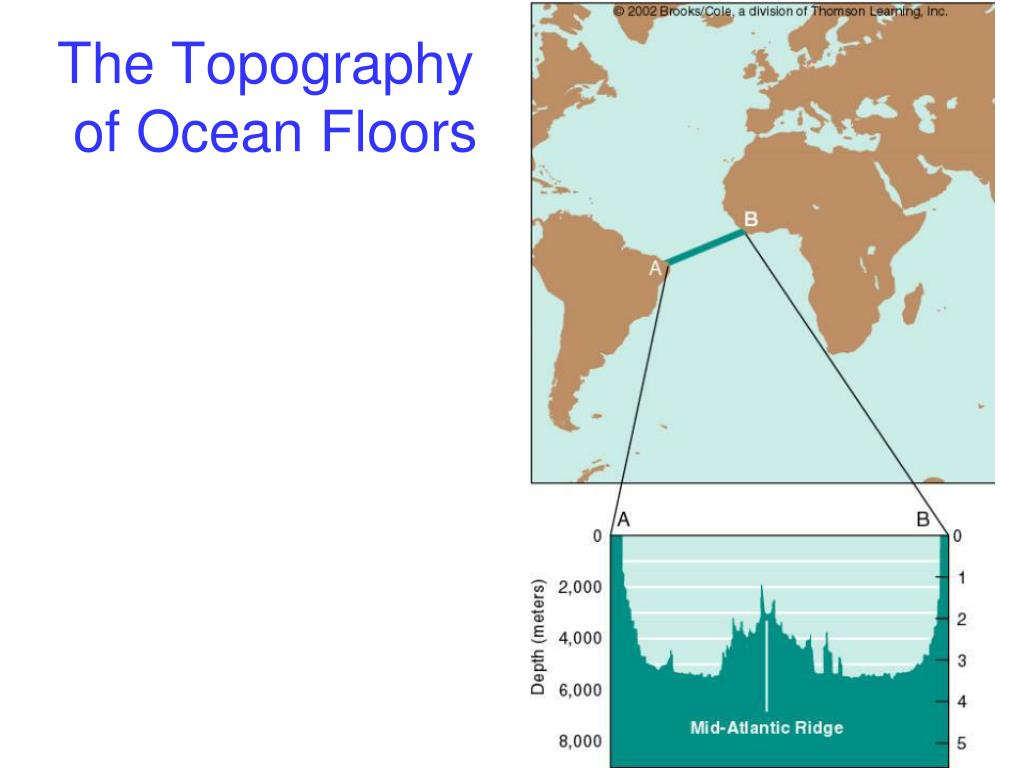 The Topography
