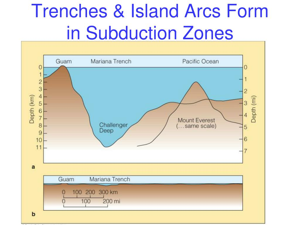 Trenches & Island Arcs Form in Subduction Zones