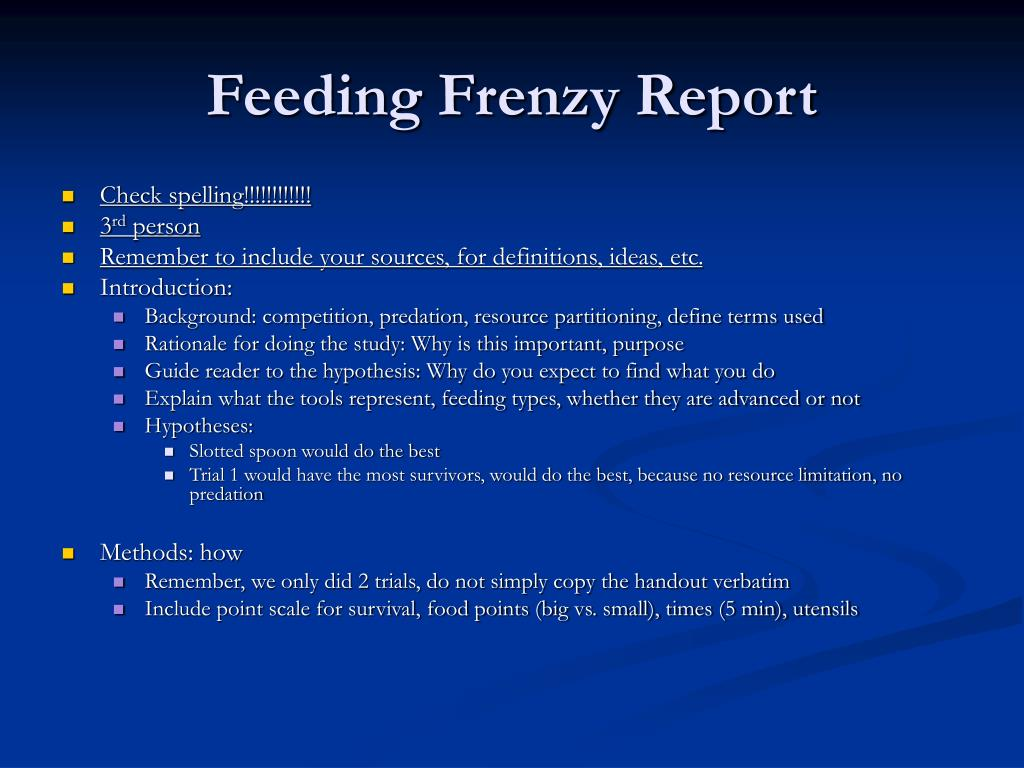 feeding frenzy report