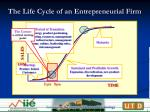 the life cycle of an entrepreneurial firm