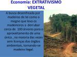 economia extrativismo vegetal
