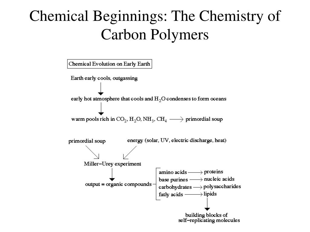 Chemical Beginnings: The Chemistry of Carbon Polymers
