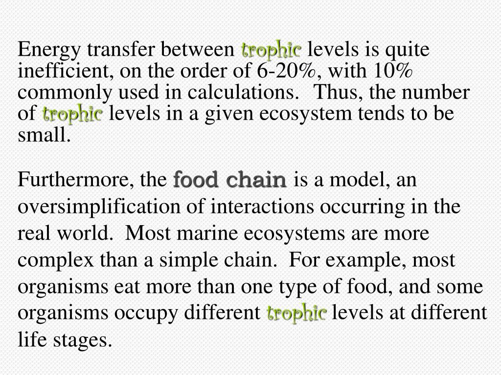 Energy Transfer within food chain