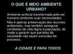 o que meio ambiente urbano