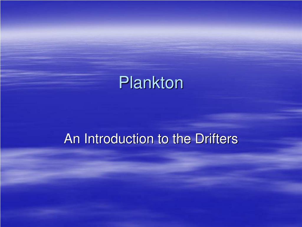 plankton l.