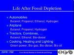 life after fossil depletion