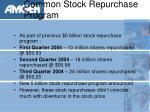 common stock repurchase program