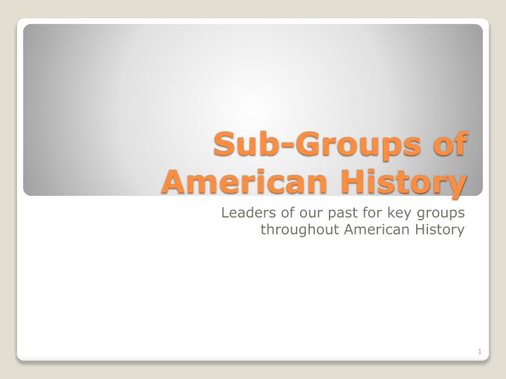 sub groups of american history n.