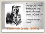 tecumseh early 1800 s