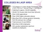 colleges in lagp area