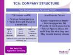 tca company structure