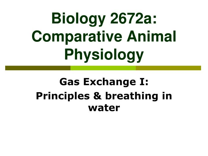 biology 2672a comparative animal physiology n.