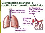 gas transport in organisms a combination of convection and diffusion