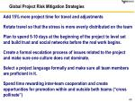 global project risk mitigation strategies1