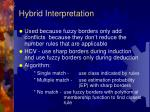 hybrid interpretation