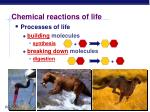 chemical reactions of life
