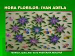 ho ra florilor ivan adela