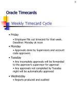 weekly timecard cycle