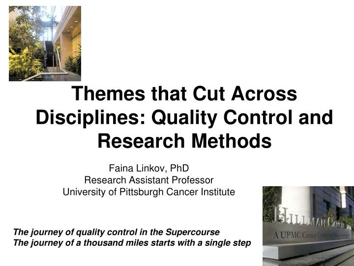 themes that cut across disciplines quality control and research methods n.