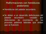 malformaciones con hendiduras posteriores