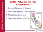 sems what are the four components