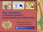 blue chip basics a practical guide to understanding the gifted child