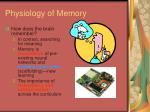 physiology of memory