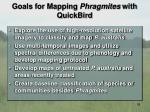 goals for mapping phragmites with quickbird