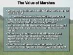 the value of marshes