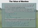 the value of marshes1