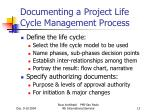 documenting a project life cycle management process