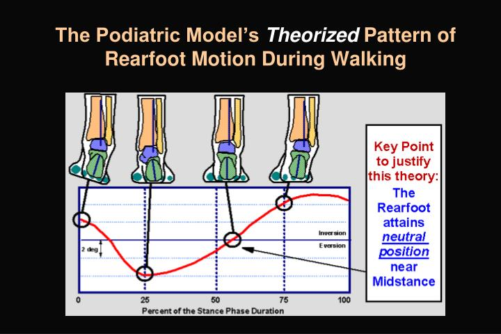 The Podiatric Model's