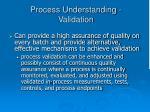 process understanding validation