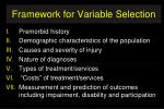 framework for variable selection