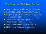 database and database servers1