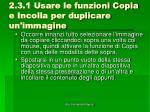 2 3 1 usare le funzioni copia e incolla per duplicare un immagine1