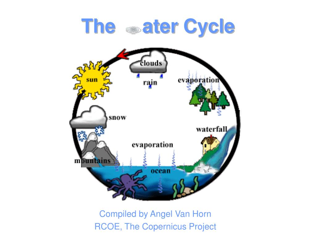 The     ater Cycle
