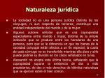 naturaleza jur dica2