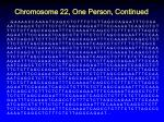 chromosome 22 one person continued