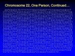 chromosome 22 one person continued1