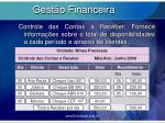 gest o financeira7