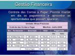 gest o financeira9