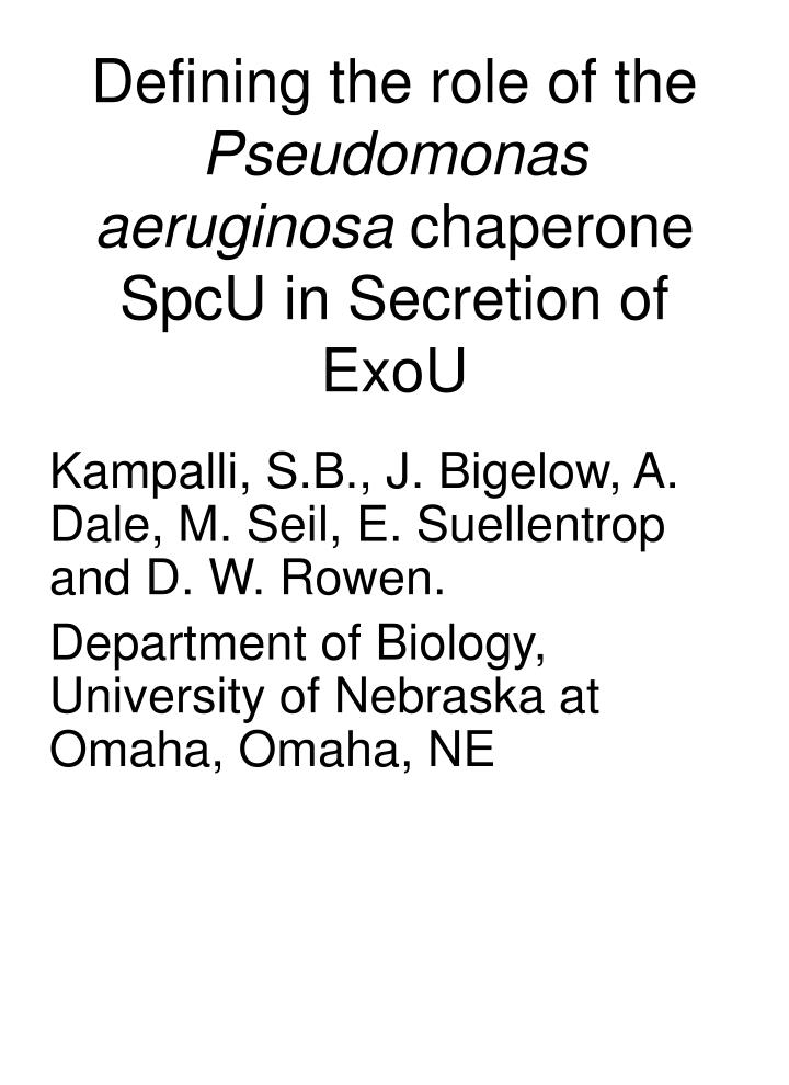 defining the role of the pseudomonas aeruginosa chaperone spcu in secretion of exou n.