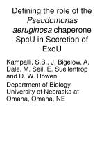 defining the role of the pseudomonas aeruginosa chaperone spcu in secretion of exou