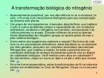a transforma o biol gica do nitrog nio