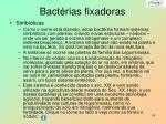 bact rias fixadoras2